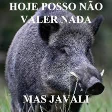 Hog Hunting Memes - imagens engraçadas da internet para whatsapp repin pinterest