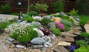 Rock Garden Plant The Alpinarium Rock Garden In Landscape Design Ideas For Design