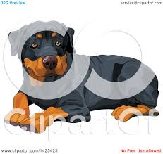 clipart of a cute rottweiler dog resting royalty free vector