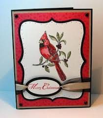 96 best cards su a cardinal images on