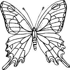 butterfly coloring pages zebra longwing for images animal to color