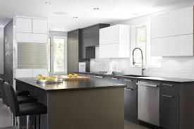cuisine acrylique cuisine moderne composée de panneaux d armoires de cuisine en