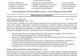 Resume Defined Developer Example Resume Custom Application Letter Proofreading