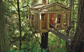cool tree house 27 amazing tree houses to bring out the inner child remodeling