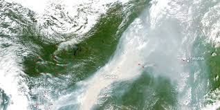 Forest And Waves State Of by Siberian Wildfire Can Be Seen From Space As Earth U0027s Boreal Forests