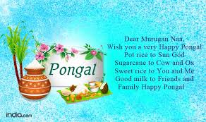 pongal 2017 happy pongal wishes whatsapp status