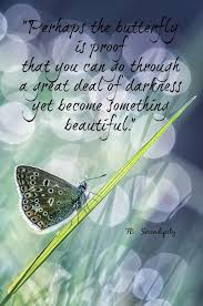 a exle from such a small butterfly sayings