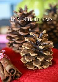 pine cone decoration ideas diy scented pine cones kleinworth co