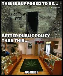 Legal Memes - legal vs illegal marijuana states public policy weed memes