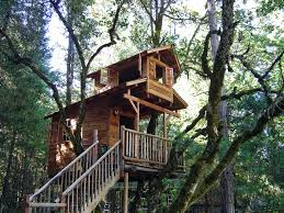 achitecture design a tree house get fantasy and retreat