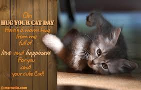 Cat Hug Meme - hug your cat day