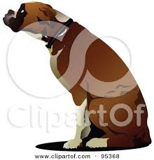 boxer dog howling royalty free rf clipart illustration of a sitting boxer dog