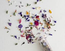 dried flowers flowers etsy
