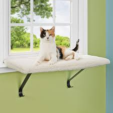 Wall Mounted Cat Perch Ideal And Safety Cat Window Perch Diy U2014 Optimizing Home Decor Ideas