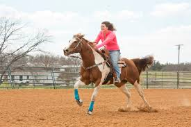 our 7 best podiatrists in louisville ky angie s list heather moon riding her horse dicey