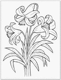 spring flower coloring page realistic coloring pages coloring home