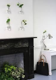 diy a living wall for the office lazy person u0027s edition gardenista