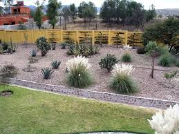 bl diy xeriscape landscaping