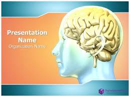 The Anatomy Of The Human Brain Human Brain Powerpoint Presentation Template Thetemplatewizard