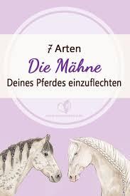 Kurzhaarfrisuren Zopf by Die Besten 25 Pferde Frisuren Ideen Auf Pferdehaare