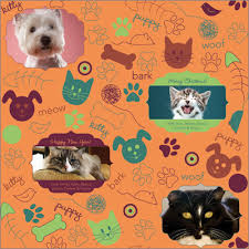 personalized wrapping paper kit n pup personalized wrapping paper pricing options