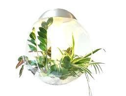 cfl grow lights for indoor plants cfl grow light home depot plant light indoor plant lights for indoor