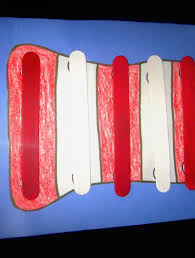 thermal way stretch fabric oz polyester spandex lycra red idolza