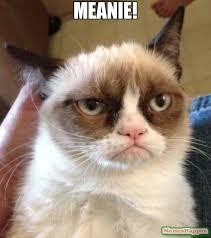 Grumpy Man Meme - meanie meme grumpy cat reverse 12327 memeshappen