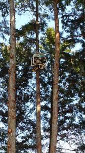 remote tree pruner