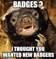 Meme Honey Badger - image tagged in honey badger imgflip