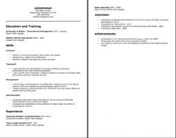 Hybrid Resume Template Word Free Resume Templates 85 Appealing Professional Template Job