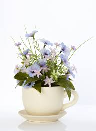 poppies and pansies teacup flowers u0026 plants decorative