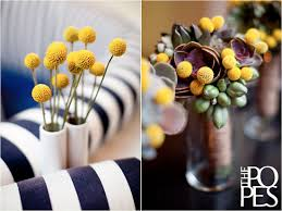Billy Balls The Cutest Yellow Flower Billy Buttons Or Billy Balls For Weddings