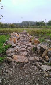 205 best trailbuilding for home and mountain bike areas images on