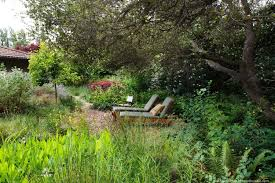 best 25 california native landscape gardens here