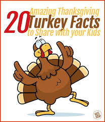 20 amazing thanksgiving turkey facts to with your we
