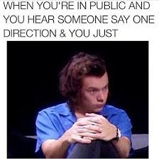 Picture Of Memes - 16 memes only a true directioner would understand capital