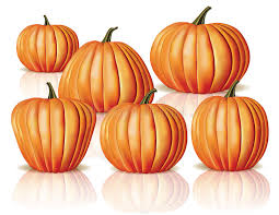 Small Pumpkins Big And Small Pumpkins Stock Image Image 34581491