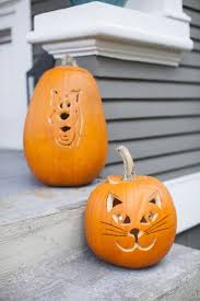 347 best halloween inspiration images on pinterest fall happy