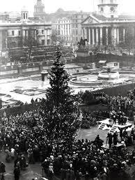 christmas in london the first trafalgar square tree 1947