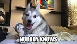 Dog Smiling Meme - cute dog smiles funny faces nobody knows wattpad
