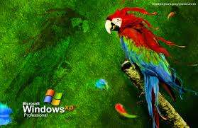 50 best free high quality windows wallpapers