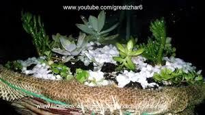 Dish Garden Ideas How To Make A Dish Garden Arrangement Succulent Plants Garden
