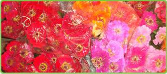 san antonio flower company san antonio florist flowers in san