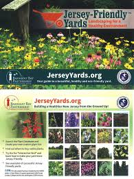 new jersey native plants jersey friendly yards conference save barnegat bay