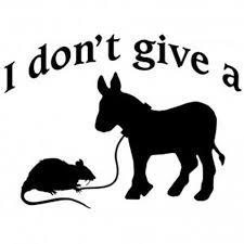 Rats Ass Meme - i don t give a rats ass meme by danielogdena591 memedroid
