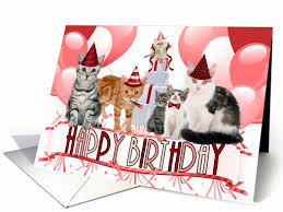 purrfect collection of birthday cards for the cat lover for pet