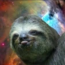 Dragon Sloth Meme - rape sloth meme dragon