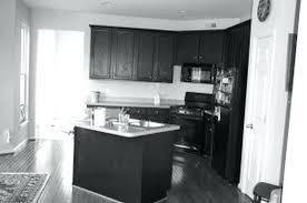 black kitchen appliances ideas kitchen appliances ideas large size of small kitchen with l shaped