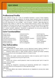 resume examples for experienced professionals resume templates